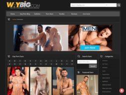 WayBig Porn Star Directory